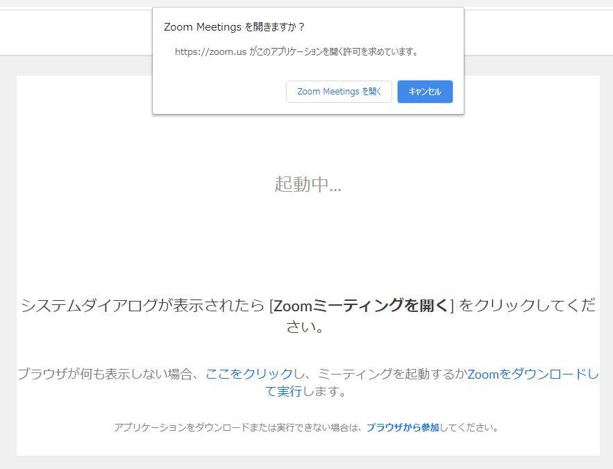 Zoom画面の例